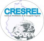 CRESREL.jpg